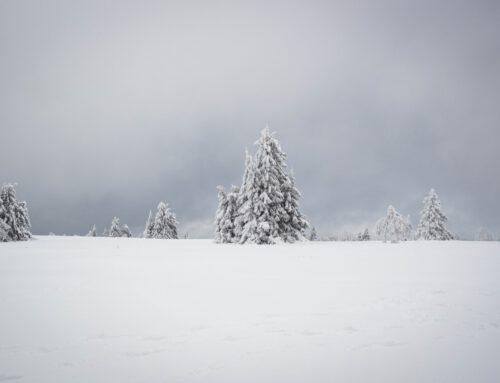 Mehr Schnee gefällig?